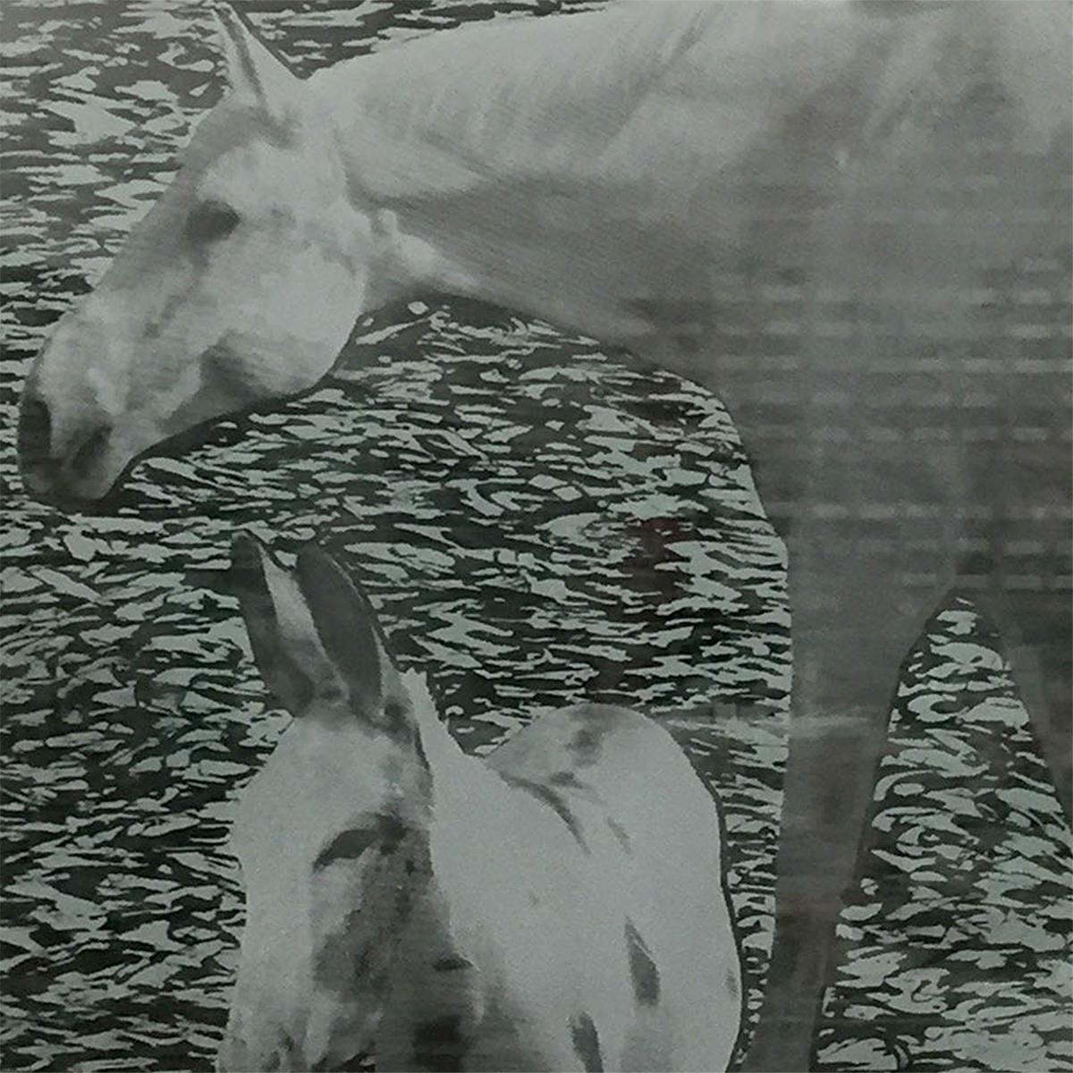 Glass Art Decor Horse and Donkey Nancy Gong Glass